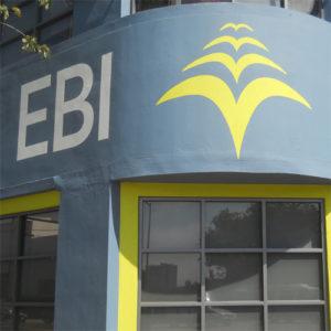 ebi crop